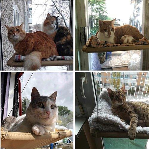 Товары для кошек - Подвесная кровать